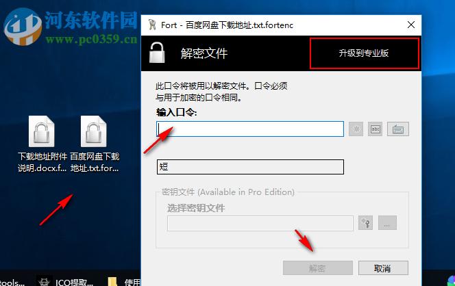 Fort Home Edition为文件加密的方法