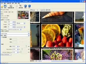 BenVista PhotoZoom Pro(图片无损放大) 6.1.0 官方中文版