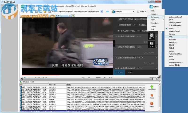getflv中文设置