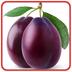 水果连连看精品app