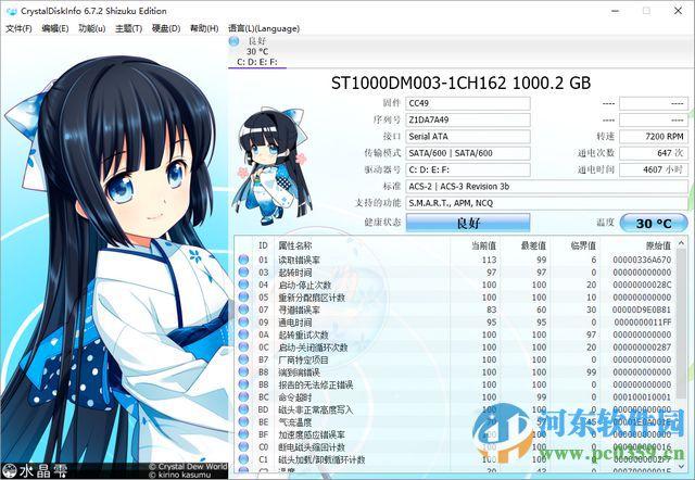 CrystalDiskInfo下载(硬盘监测工具)