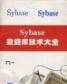 sybase数据库 16.0 官网中文企业版