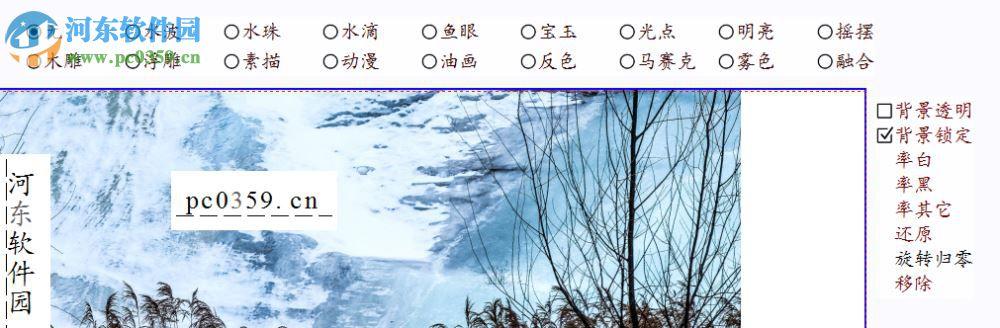 任性动图 9.60 官方版