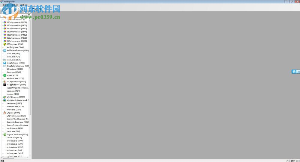 WSExplorer(网络抓包工具) 附使用教程 1.5 绿色中文版