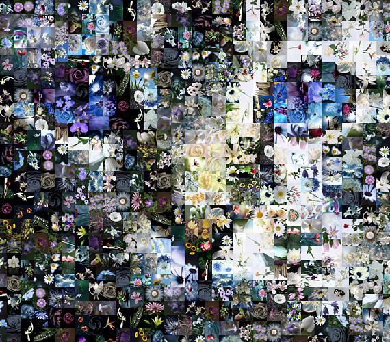 马赛克拼图自动生成软件(Artensoft Photo Mosaic Wizard) 2.0.140 中文版