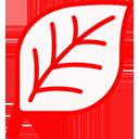 MindLayout for Mac(思维导图软件) 3.0 免费版