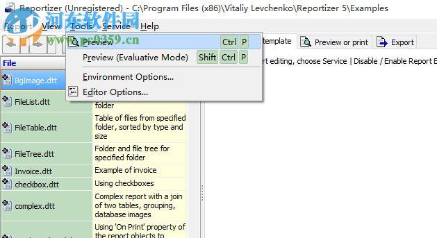 Reportizer(数据报表工具) 6.3.2.14 官方版