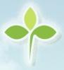 三叶草学考模拟系统下载 6.10 绿色版