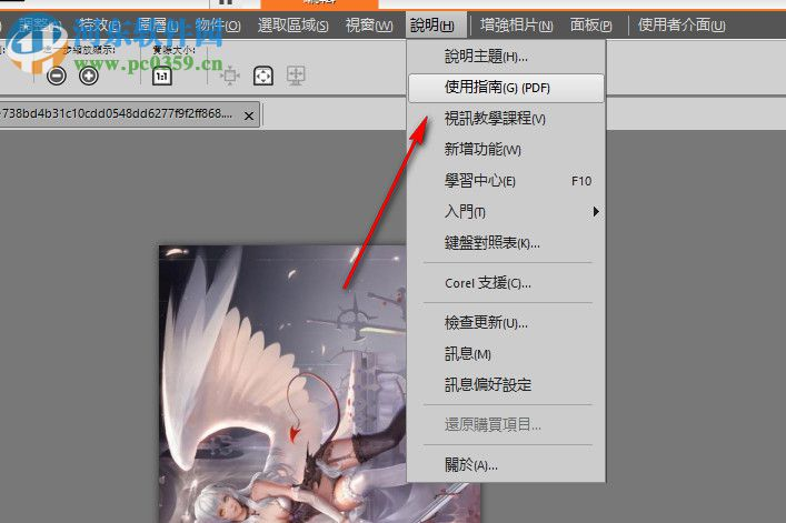 Corel PaintShop Pro 2019 Ultimate(附安装教程) 21.0 中文破解版