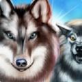 狼:进化论无限货币版