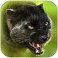 猎豹模拟器OL