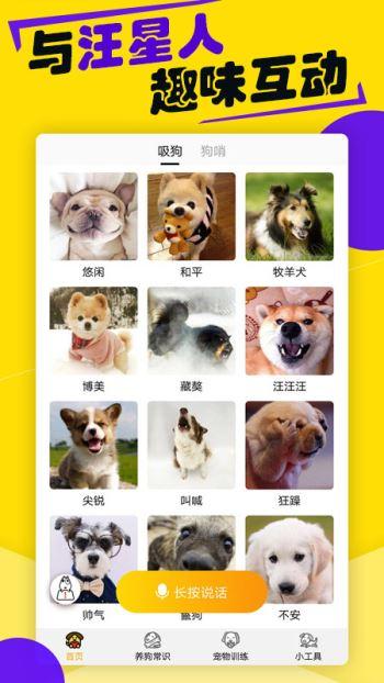 狗语翻译器(4)