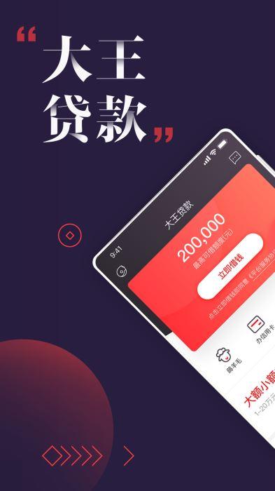 大王贷款(2)