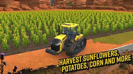 模拟农场18(4)