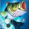 狩猎鱼冲突