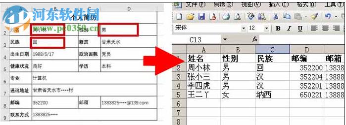 Word文档提取汇总工具 1.6 官方版