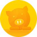 猪宝期货投资