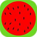 甜西瓜桌面 2.0.2 手机版