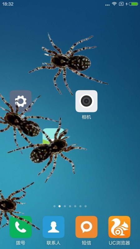 蜘蛛在手机爬行(2)