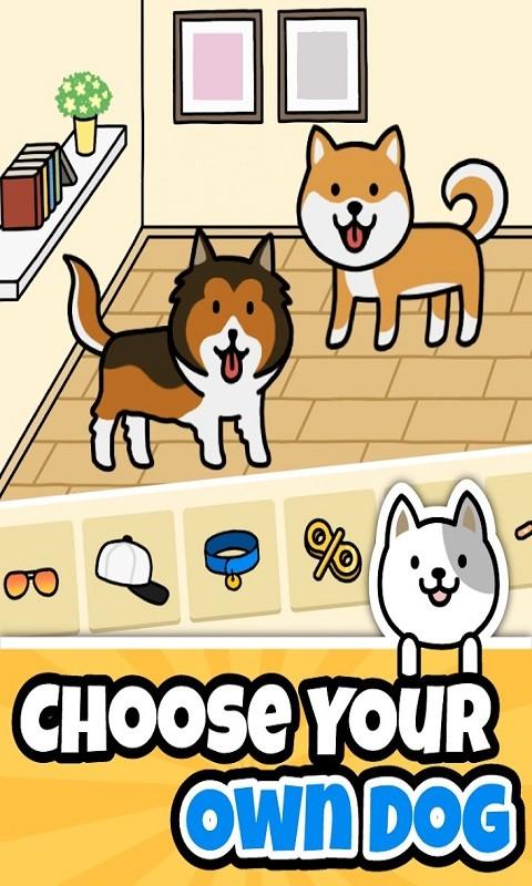 可爱狗狗(2)