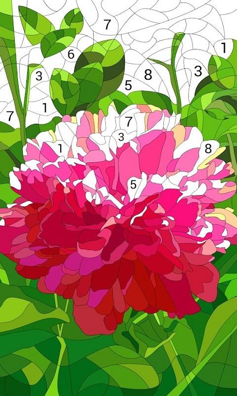 按数字编号上色的涂色书(2)