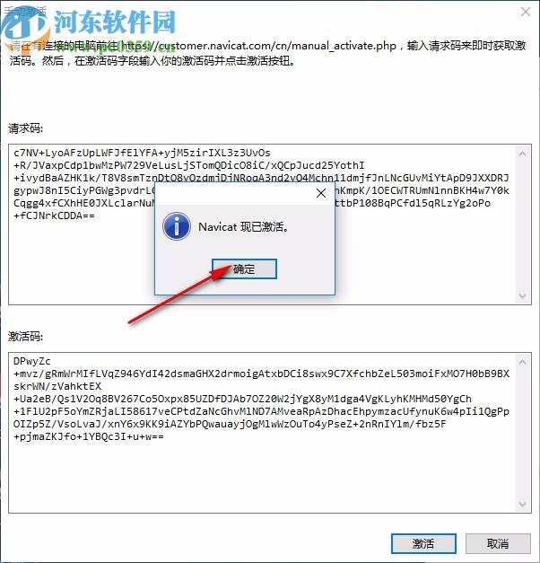 Navicat 15 for MongoDB中文破解版