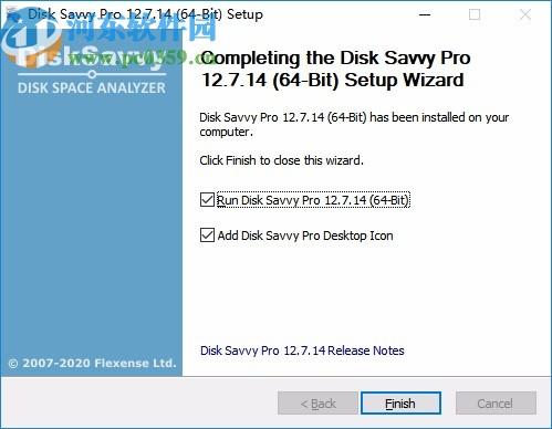 disk savvy pro下载