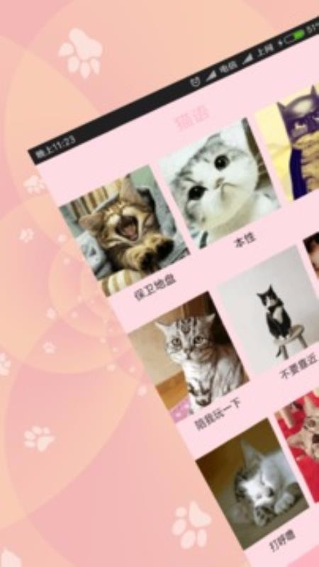 狗语猫语翻译器(1)